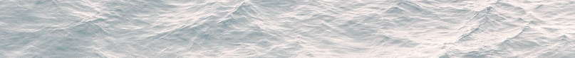 water bottom banner