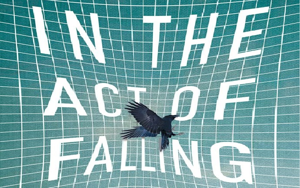 'In the Act of Falling' by Danielle McLaughlin